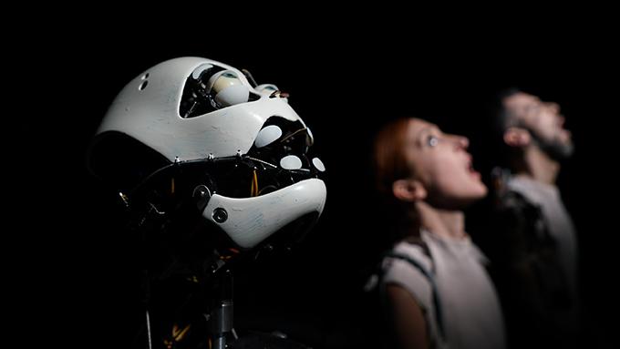 Robot Dreams - Meinhardt & Krauss